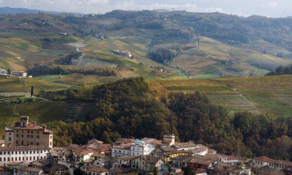 Weinstadt Barolo und Rebberg Cannubi